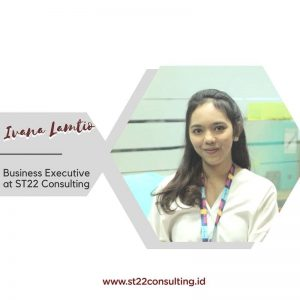 business executive st22 consulting